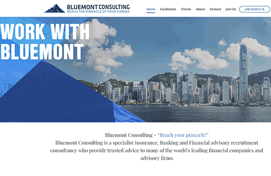 Bluemont Consulting Image